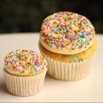 Mini Vanilla Sprinkles