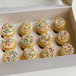 Vanilla Sprinkles Minis