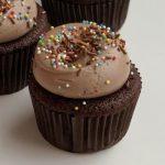 Milk Chocolate Sprinkles Cupcake