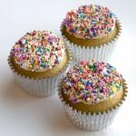 Vegan Sprinkles Cupcake