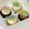 Happy Birthday Cupcakes